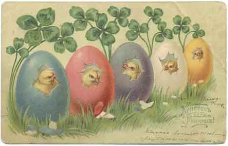Цыплята в яйцах, 1904 год