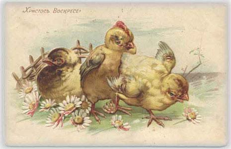 Желтые цыплята, цветы и фрагмент плетеня, 1911 год