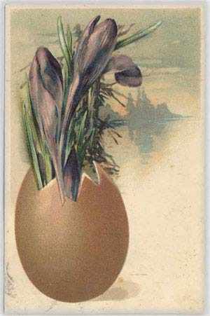 Цветы растут из куриного яйца